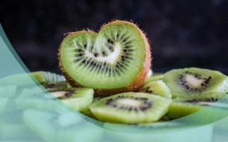 kiwi_es2